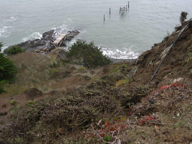 San Francisco 2008 032
