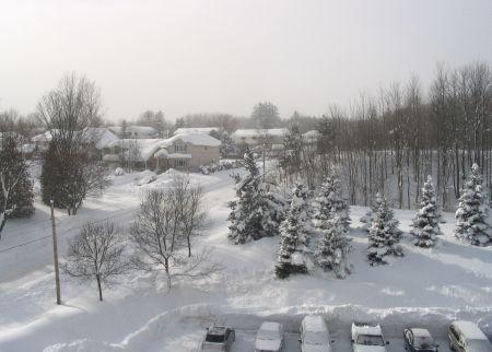 Snowpic_2